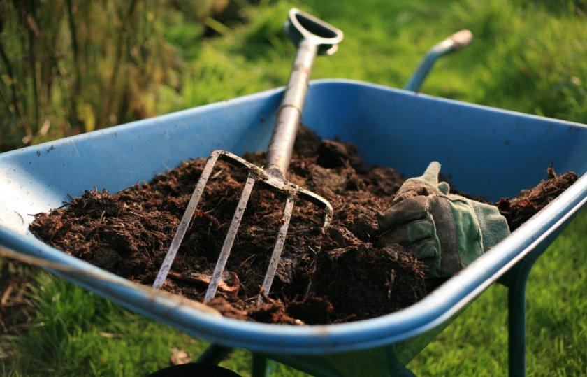 Внесение органических удобрений