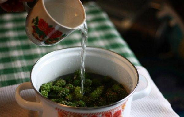сосновый чай рецепт