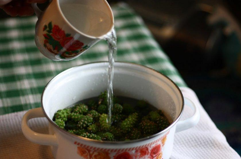 Приготовление настоя на зелёных шишках