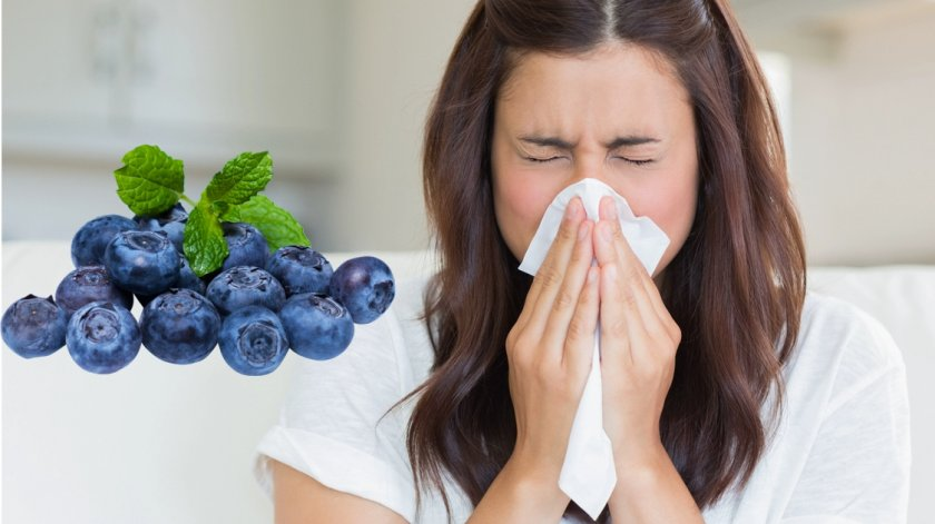 Настойка из плодов черники при простуде