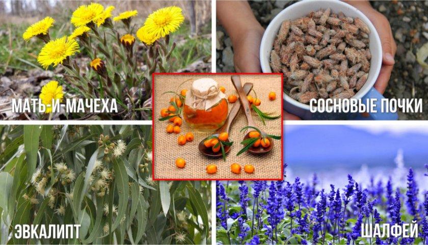 Ингредиенты для ингаляции