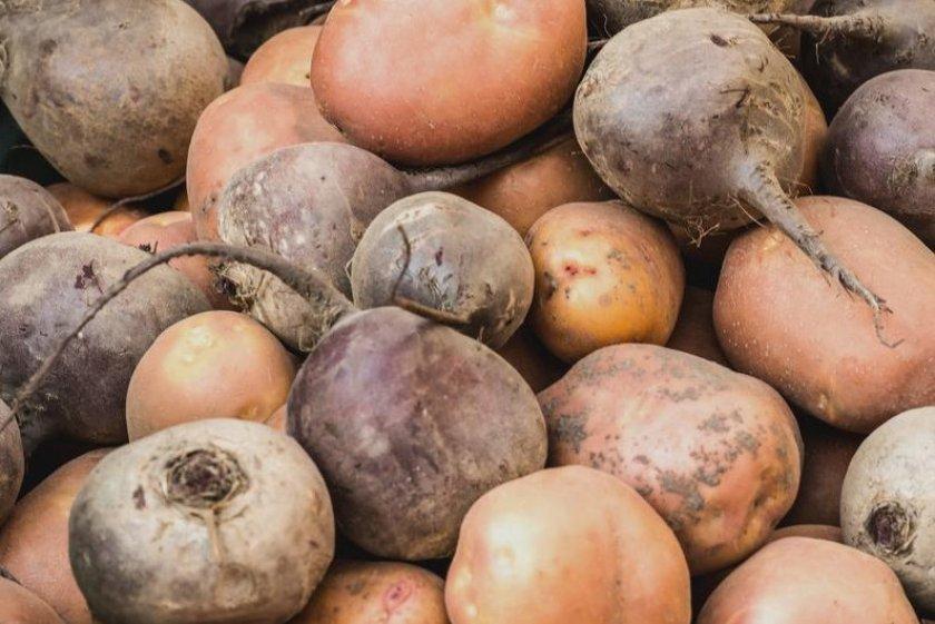 Хранение тыквы с картофелем