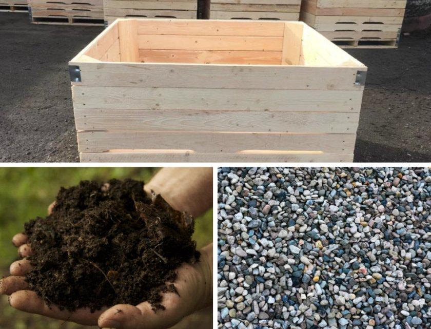 Материалы для выращивания тюльпанов