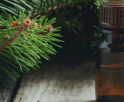 Эфирное масло ели: чем оно полезно и где применяется