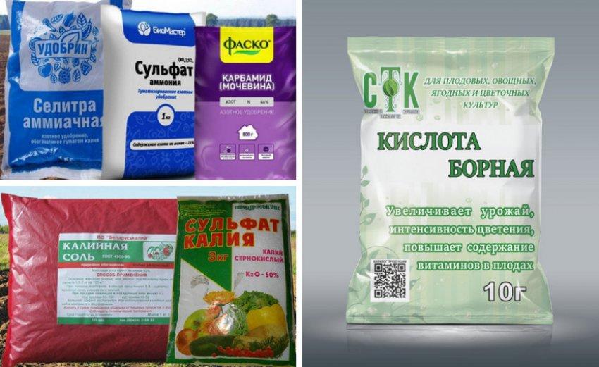 Препараты для подкормки гладиолусов