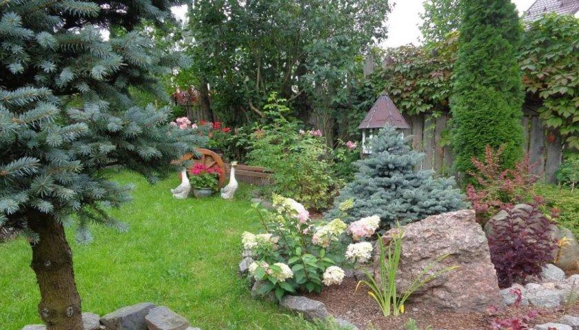 Хвойный сад с керамическими фигурами