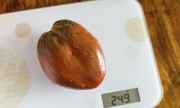 Сорта помидоров удлиненной формы - Огород