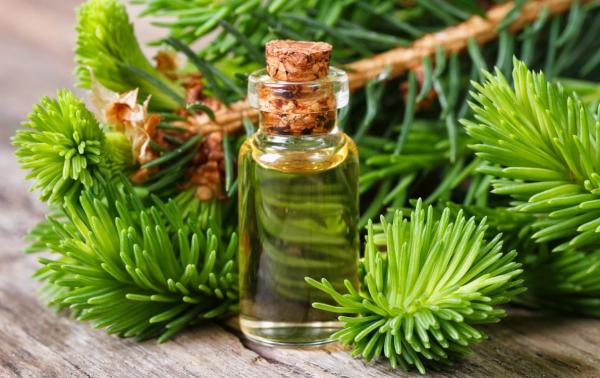 Пихтовое масло для волос: применение масок для волос из пихтового масла