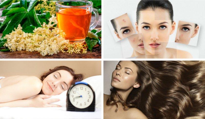 Позитивное влияние чая из бузины на организм