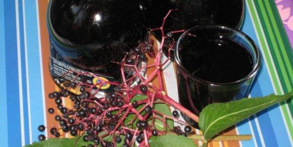 Сироп из цветков черной бузины с лимоном
