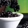 Полезные свойства и вред черной бузины