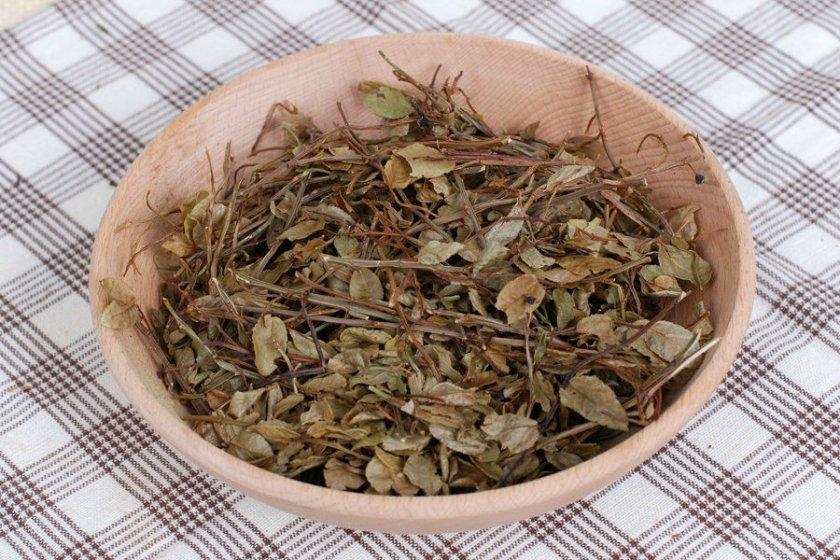 Сушеные листья черники