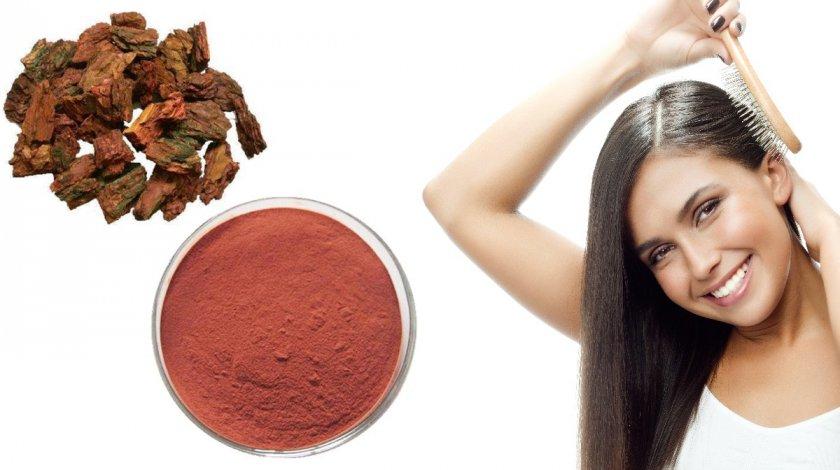 Экстракт сосновой коры для волос