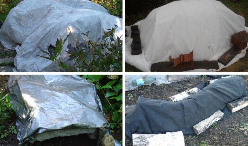 Материалы для укрытия гортензии