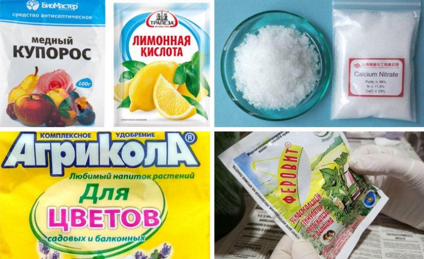 Препараты против хлороза гортензии