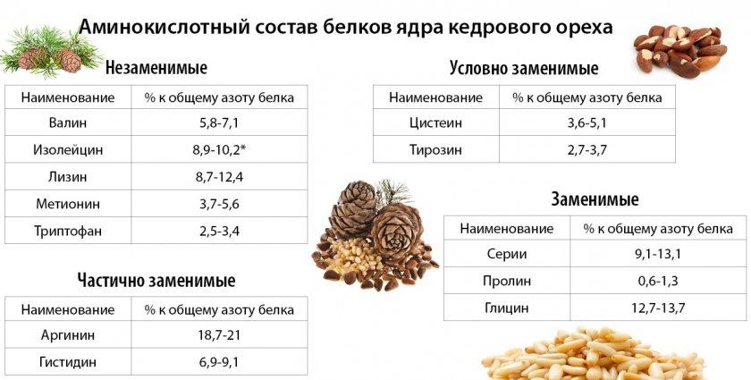 Аминокислотный состав ядра кедрового ореха