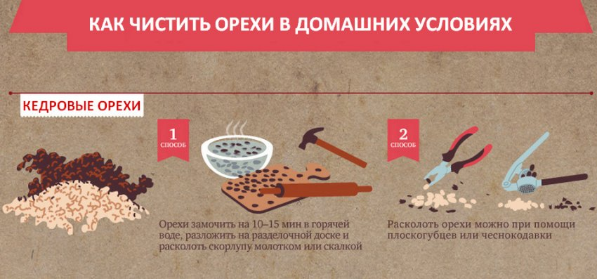 Как почистить кедровые орехи