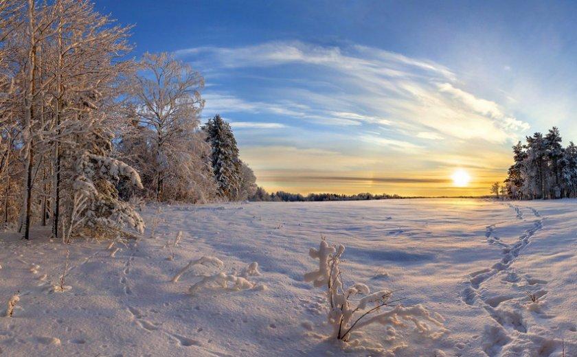 Зима в Ленинградской области