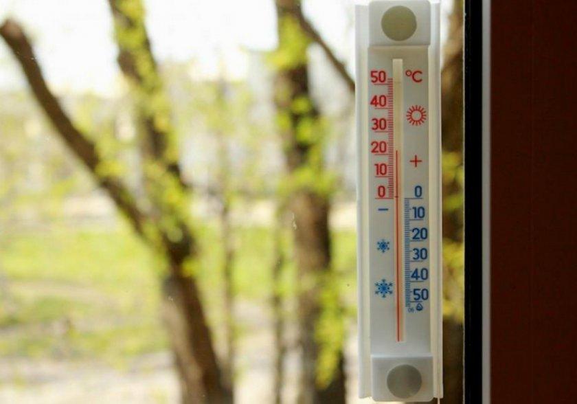 Температура для растения
