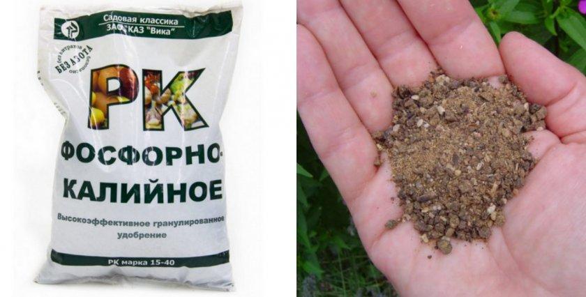 Калийно-фосфорная подкормка