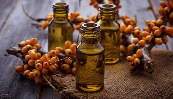 Облепиха и облепиховое масло при лечении ангины