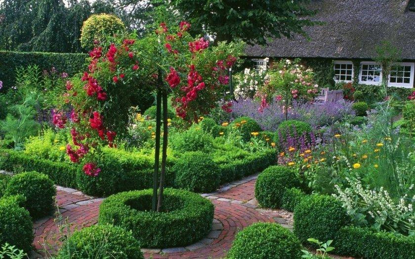 Ландшафтный дизайн с деревом