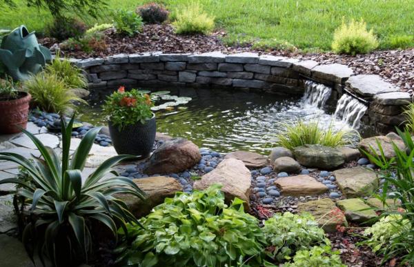 Как правильно оформить пруд на участке чтобы он выглядел гармонично