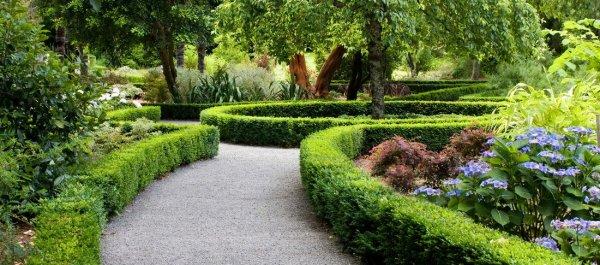 Грамотные экологические композиции в саду