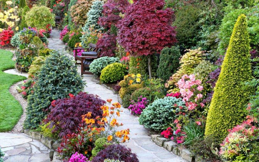 Цвета оформления сада