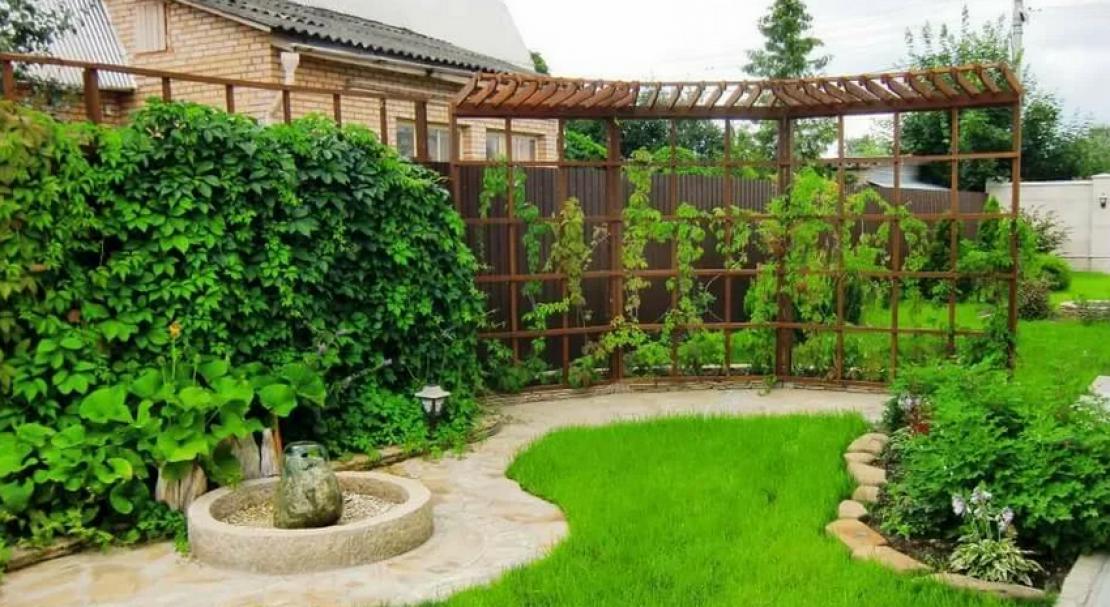 фёрби как отделить огород от зоны отдыха фото заглохший весь зеленой