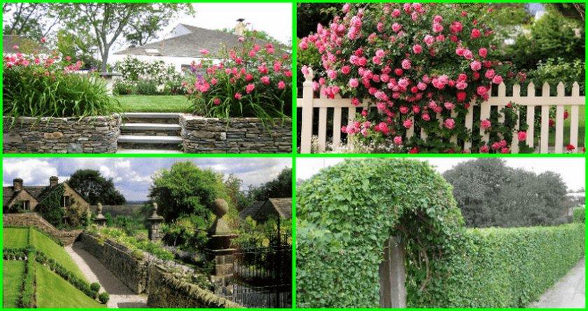 Забор и живая изгород в пейзажном стиле