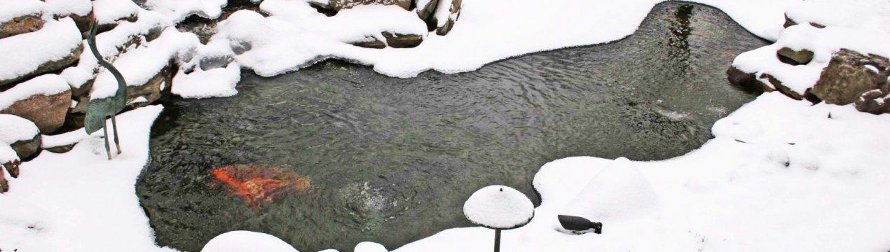 Как подготовить пруд на зиму: чем накрыть и как утеплить