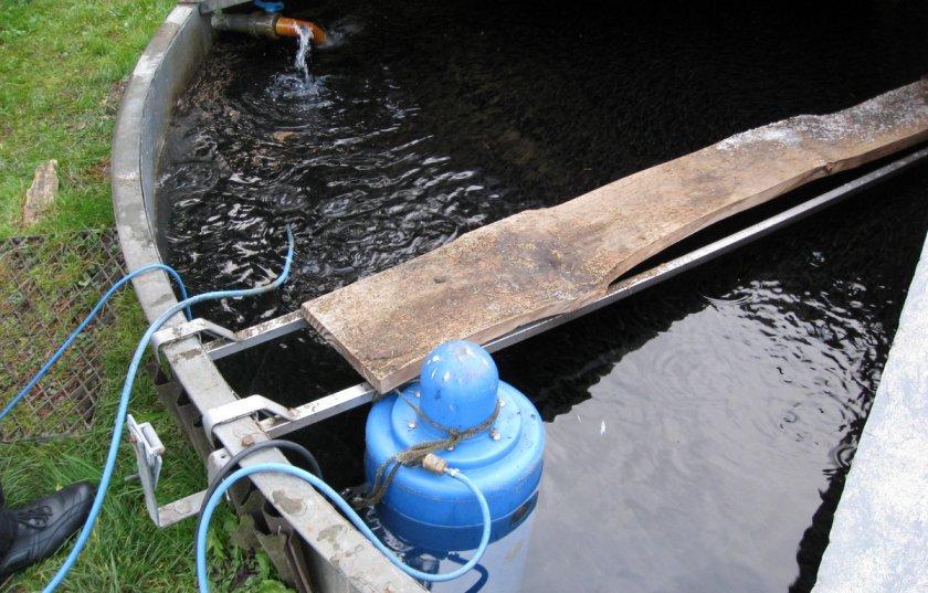Создание пруда на участке