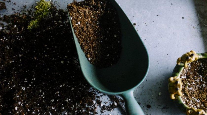 Почва для пересадки