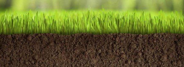 Как выровнять землю на участке под газон