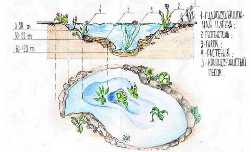 Схема устройства пруда