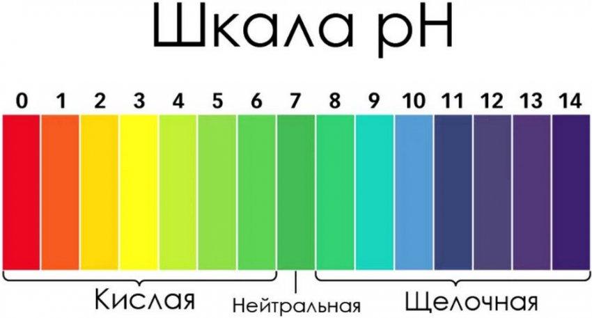 Шкала кислотности воды