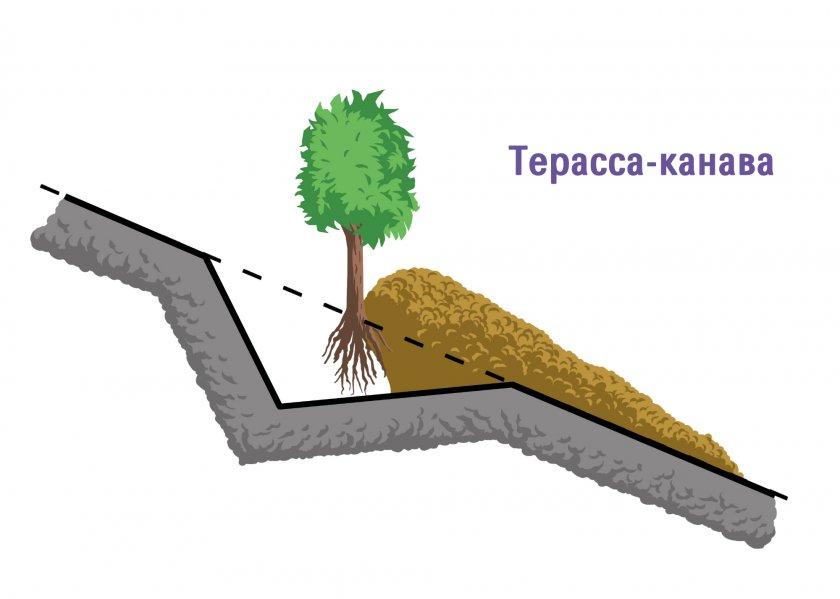 Террасы-канавы