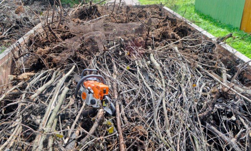 Очистка участка от ненужной растительности