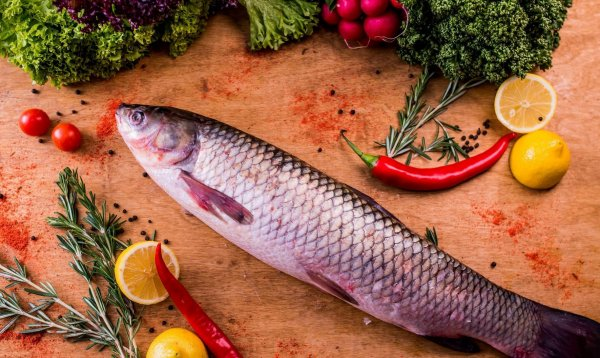 Рыба белый амур: рецепты приготовления, полезные свойства и особенности