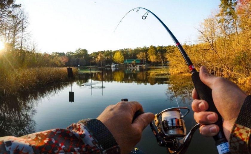 Рыбалка на белого амура
