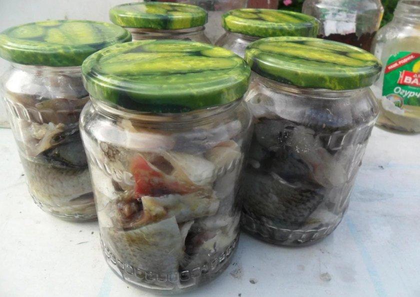 Рыбные консервы из карася в домашних условиях