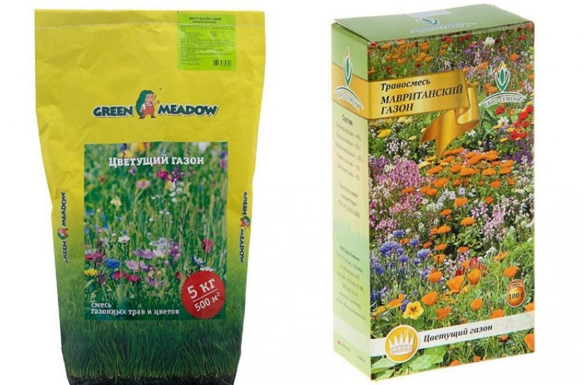 Семена цветущего газона