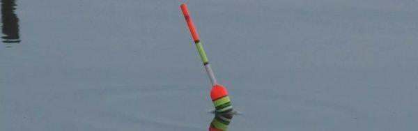 Ловля карася - 20 видео о рыбалке на поплавочную удочку и фидер