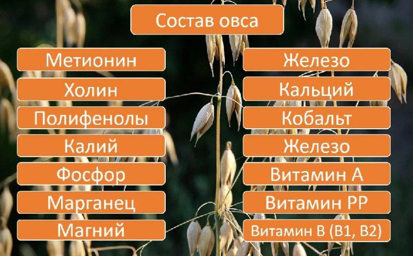 Состав овса