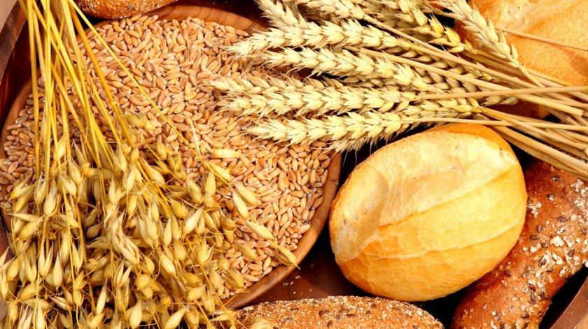 Сфера использования зерновых культур