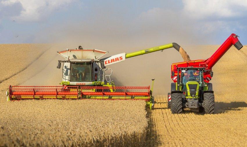 Уборка озимой пшеницы