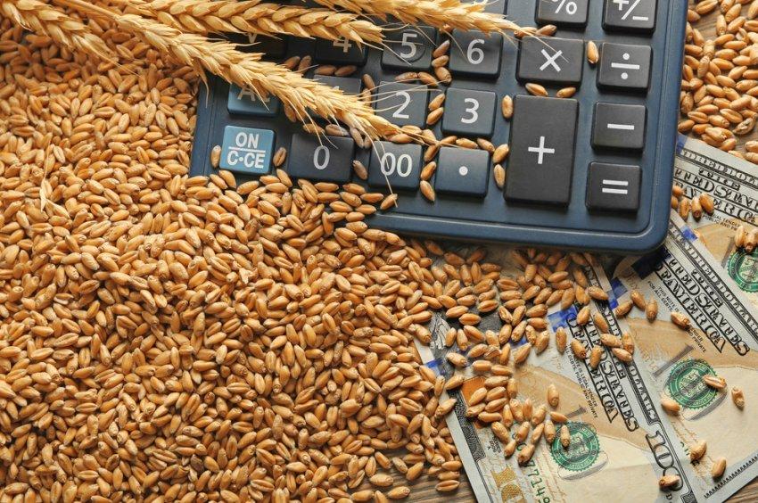 Российская пшеница на мировом рынке