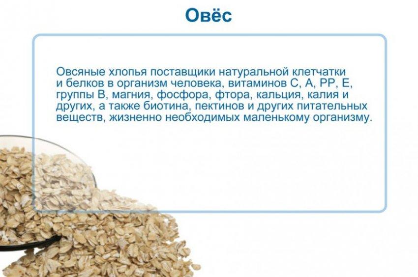 Полезные свойства овса