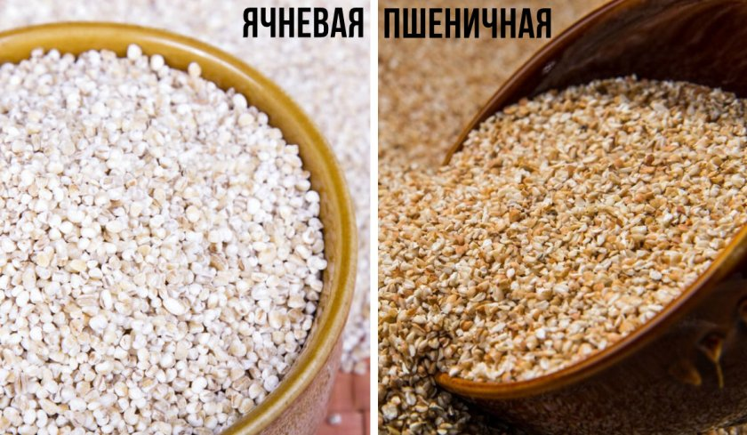 Ячневая и пшеничная крупа